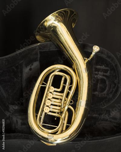 baritone brass instrument with valves in dark case Canvas Print