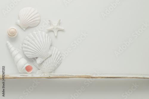 Fotografie, Obraz  Marine items shelf.