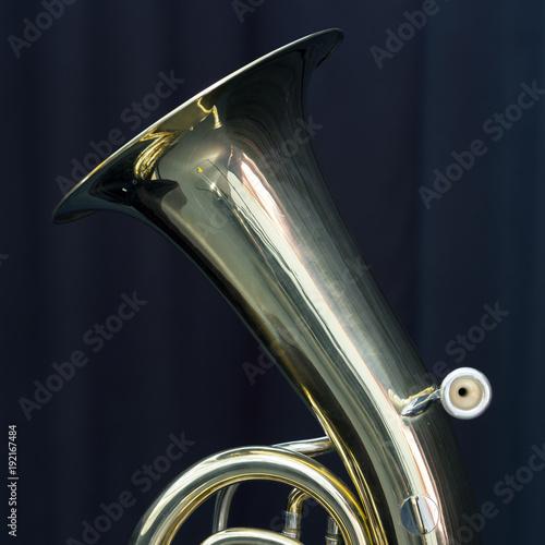 pitcher of baritone brass instrument against dark background Wallpaper Mural