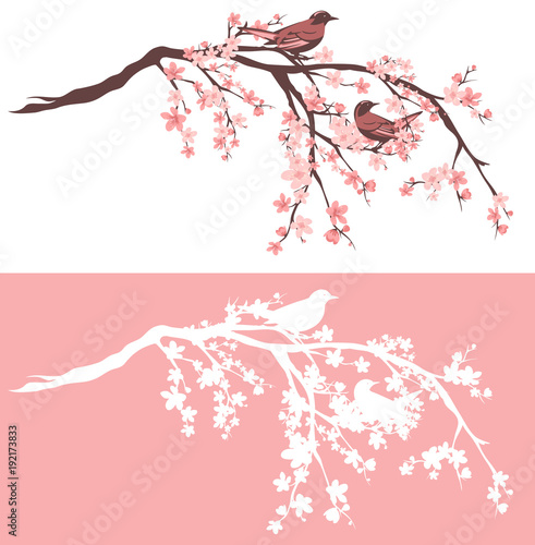 Birds Sitting On Blooming Sakura Tree Branches Outline And