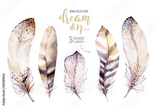 Ręcznie rysowane akwarele żywy zestaw piór. Różane skrzydła w stylu Boho. Ilustracja piór na białym tle. Czeski ptak mucha na koszulkę, zaproszenie, kartę ślubną.