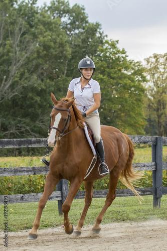 Fotografía  Horse and rider turn a corner at a gallop