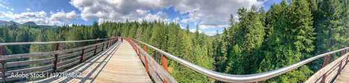 Valokuva  Panoramic view of Kinsol Trestle wooden bridge in Vancouver Island, Canada