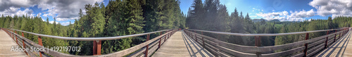 Fényképezés Panoramic view of Kinsol Trestle wooden bridge in Vancouver Island, Canada