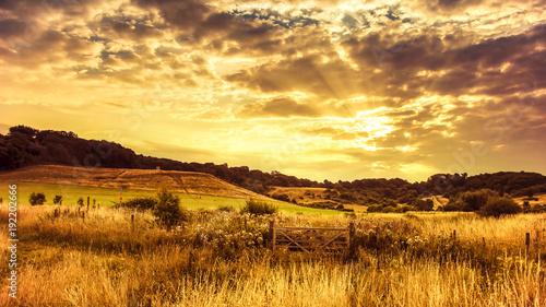 Tuinposter Honing Rural sunset
