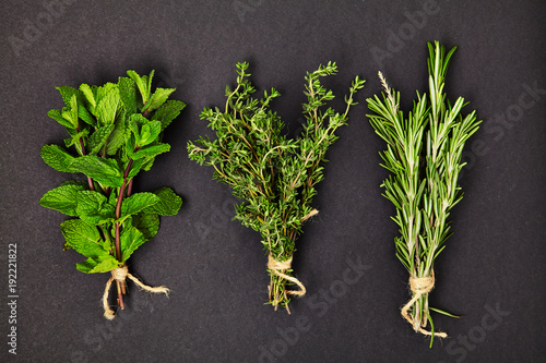 Spoed Foto op Canvas Natuur Useful herbs. Mint. Thyme. Rosemary. Fragrant. Green. Freshness. For your design. Isolated.