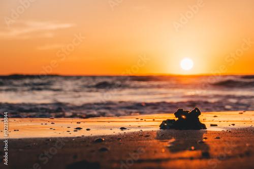 Deurstickers Zee zonsondergang Coral Sunset
