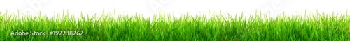 Deurstickers Gras Gras im Frühling