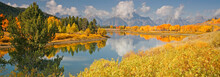 Fall At Oxbow Bend Below The T...