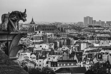 Gargoyle of Notre Dame de Paris, look down from the roof of the cathedral. Black and white photo.