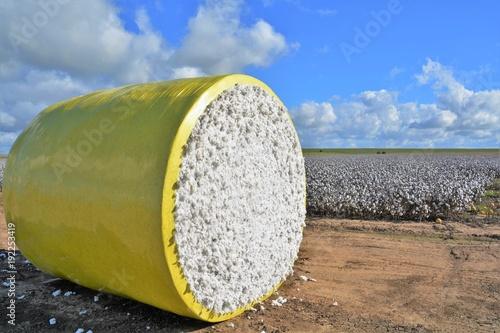 Photo Bale of cotton.