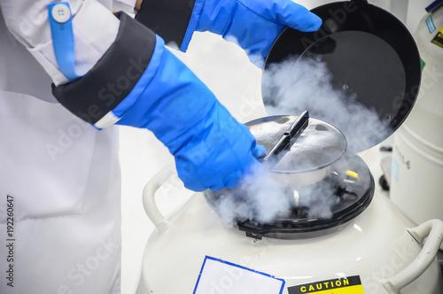 Fényképezés  Close up Sperm Freezing storage in liquid nitrogen tank, Laboratory infertility