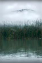Pacific Northwest Coastal Mist...