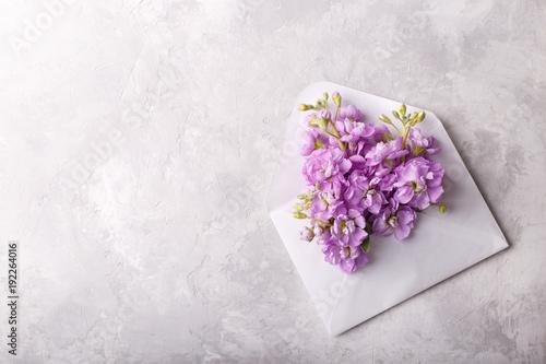 Foto op Canvas Bloemen Lilac matthiola flowers