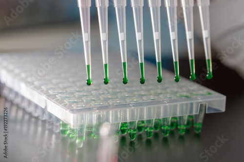 Fotografie, Obraz electrophoresis device in a genetics lab to decrypt the genetic code