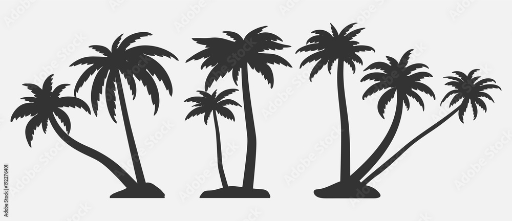 Fototapety, obrazy: Tropical trees for design about nature.   Set of palm trees silhouettes. Vector illustrations isolated on white background.