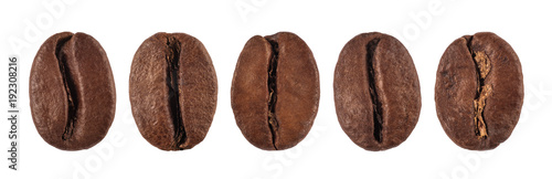 Photo sur Aluminium Café en grains coffee bean isolated on white background, nature