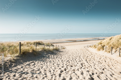 Tuinposter Strand Sandy dunes on the coast of North sea in Noordwijk, Netherlands, Europe.