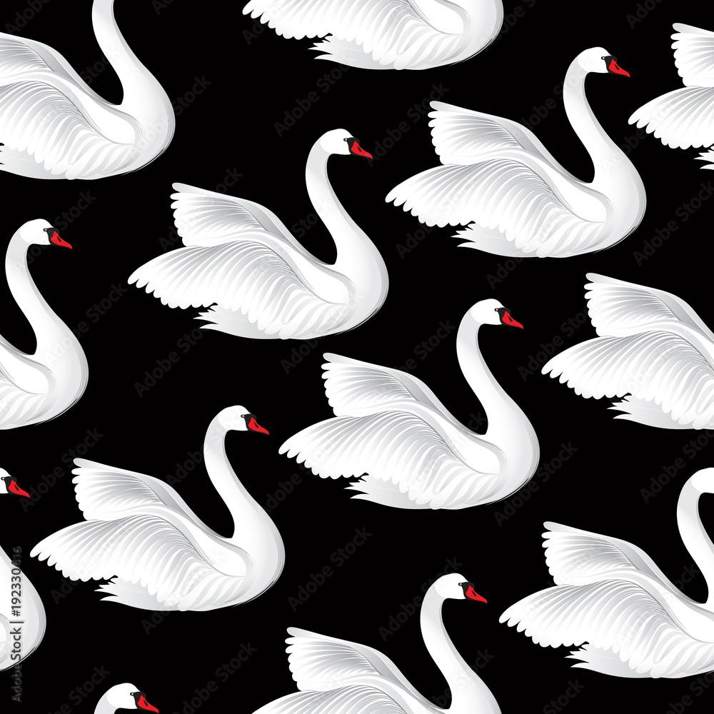 White birds seamless pattern. Wildlife background. Swimming swan
