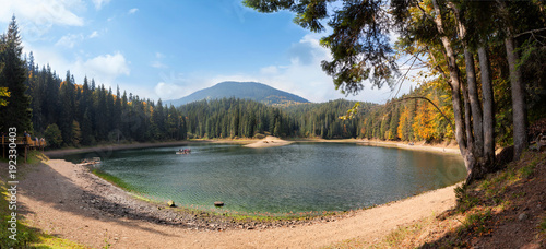 Plakat Jezioro w górach otacza sosnami