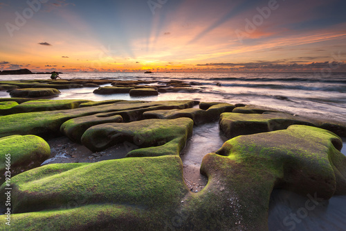 beautiful sunset seascape with green moss and ray of light.