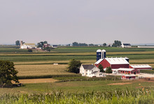 Amish Farm On Sunny Day 2