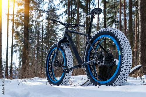 Fatbike in the winter forest on a sunny day
