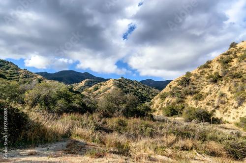 Plakat Podeszczowe chmury nad lasową doliną w ranku słońcu