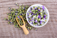 Small, Violet Heartsease / Top View Of Fresh And Dried Flowers From Field Pansy On A Wooden Background