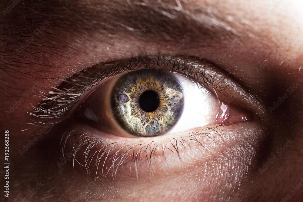 Fototapety, obrazy: Eye close up