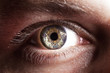 Leinwandbild Motiv Eye close up