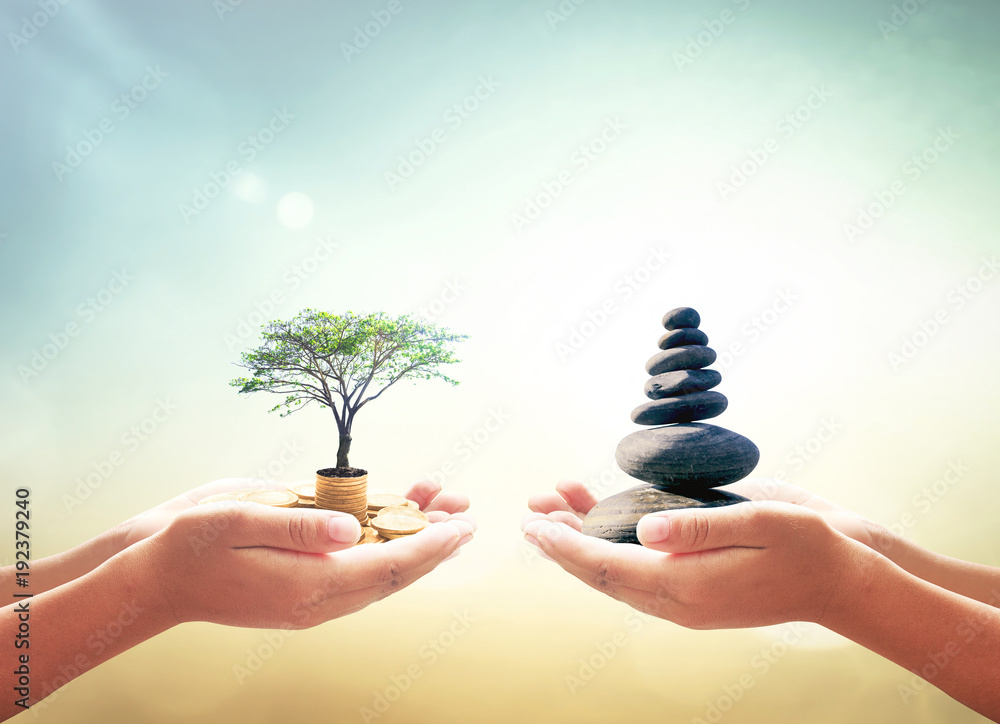 Fototapeta Investment and fund concept: Two human hands holding stacks of golden money with big tree and Zen stones on blurred nature background