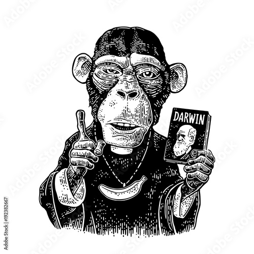 Canvas Print Monkey dressed in a cassock and banana chain.