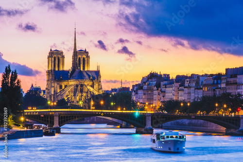 Poster Paris Notre Dame de Paris Cathedral and Seine River