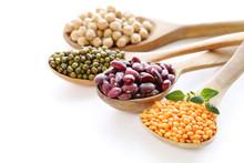 Various Kinds Of Legumes - Beans, Lentils, Chickpeas, Mung Beans
