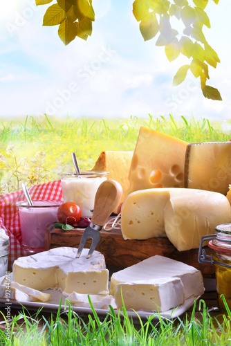 Staande foto Zuivelproducten Assortment of dairy products on grass in the meadow vertical