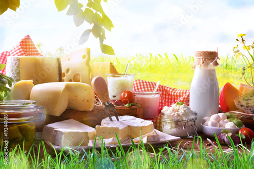 Montage in der Fensternische Milchprodukt Assortment of dairy products on grass in the meadow