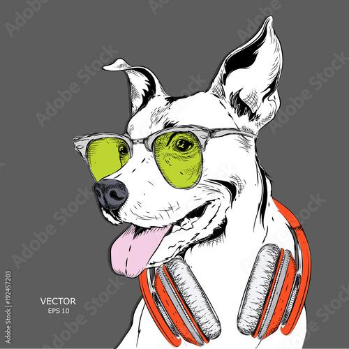Plakat portretu psa w czapce hip-hop i słuchawkach. Ilustracji wektorowych.