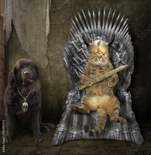 The cat king is sitting on an iron throne Tablou Canvas