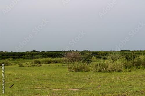 Staande foto Afrika Unendliche Weiten der Wildnis von Afrika Uganda