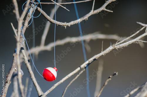 Fotografie, Obraz  Fishing Bobber Entangled in the Dried Tree Branches