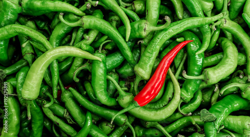 Pepper is green and red. Hot pepper. Pepper background. Chilli. - 192575891