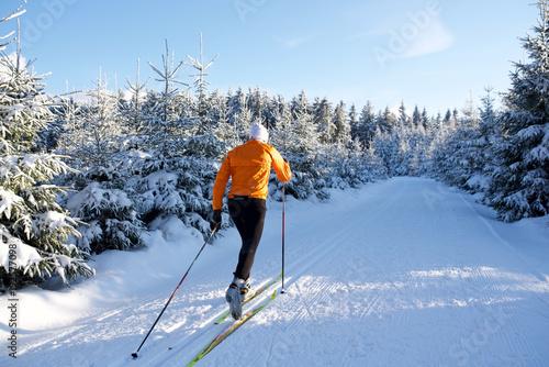 Stickers pour porte Glisse hiver Langlauf im Thüringer Wald, Loipe mit Skifahrer, Rennsteig 8