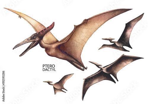 Carta da parati Realistic watercolor dinosaur
