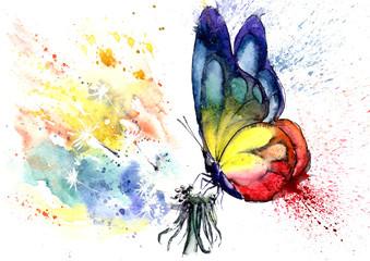 Fototapeta Dmuchawce watercolor drawing of a butterfly on a dandelion