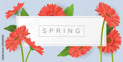 Horizontal banner for text with red gerbera daisy flower and green leaf Tableau sur Toile