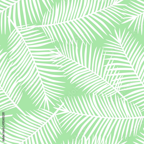 White Palm Leaves On A Light Green Background Exotic Seamless Pattern Vector Buy This Stock Vector And Explore Similar Vectors At Adobe Stock Adobe Stock If you have your own one, just send us the image and we will show it on the. white palm leaves on a light green