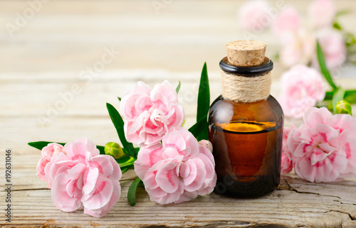 Photo Carnation absolute essential oil and pink flowers on the wooden table