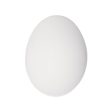 White Egg Isolated On A White Background