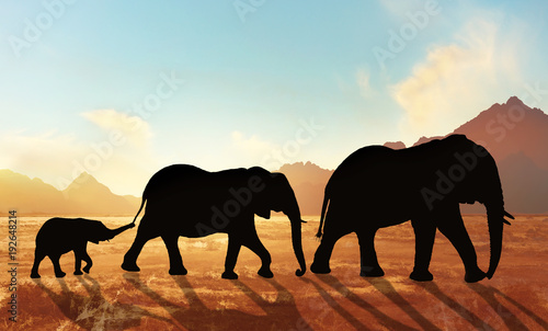 Garden Poster Brown family of elephants at sunset